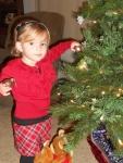 I LOVE the Christmas Tree!